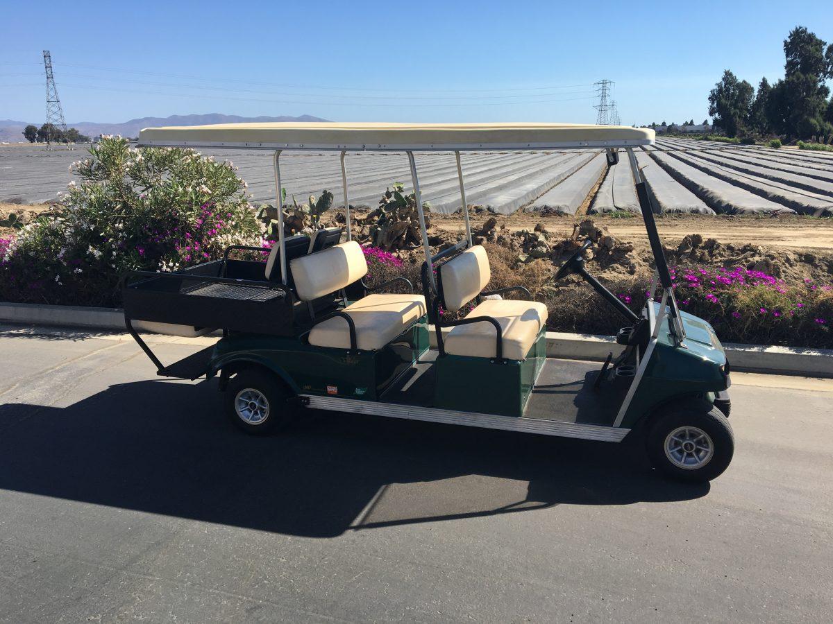 Electric Golf Car Company Inc